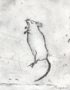 A mouse lying down
